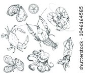 seafood sketches isolated on... | Shutterstock .eps vector #1046164585