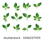 green sprouts. growing plants... | Shutterstock .eps vector #1046237455