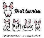 bull terrier with gestures.... | Shutterstock .eps vector #1046266975