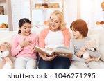 beautiful grandmother looks at... | Shutterstock . vector #1046271295