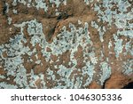 wall  background  texture of... | Shutterstock . vector #1046305336