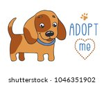 cute dog with adopt me text.... | Shutterstock .eps vector #1046351902