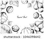 tropical fruits  illustration... | Shutterstock .eps vector #1046398642