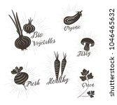 vegetables vector design