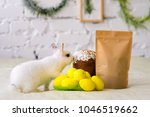 small white furry rabbit... | Shutterstock . vector #1046519662