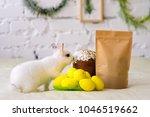 small white furry rabbit... | Shutterstock . vector #1046519662