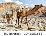 in  danakil ethiopia africa  in ... | Shutterstock . vector #1046601658