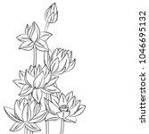 vector contour lotus lily... | Shutterstock .eps vector #1046695132