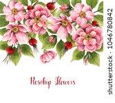 rosehip flowers  watercolor... | Shutterstock . vector #1046780842