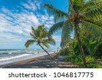 walking on the wild beach of... | Shutterstock . vector #1046817775