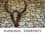 Bull Skull Hanging On A Stone...