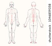 body set  front and back ... | Shutterstock .eps vector #1046859358
