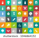 vegetables icons in set... | Shutterstock .eps vector #1046864152