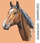 Colorful Portrait Of Trakehner...