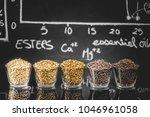 beer science   black board with ... | Shutterstock . vector #1046961058