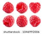 Raspberry Isolated. Raspberry...