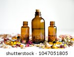 dried flowers with amber... | Shutterstock . vector #1047051805