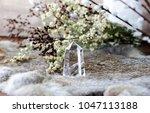 sage skull neutral still life | Shutterstock . vector #1047113188