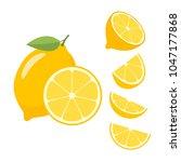 lemons on a white background.... | Shutterstock .eps vector #1047177868