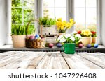 easter table background with... | Shutterstock . vector #1047226408