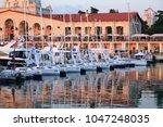sochi  russia on may 1  2016...   Shutterstock . vector #1047248035