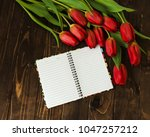 bouquet of tulips  blank...   Shutterstock . vector #1047257212