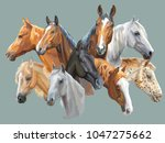 set of colorful vector...   Shutterstock .eps vector #1047275662