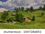 summer in alpe di siusi seiser... | Shutterstock . vector #1047286852