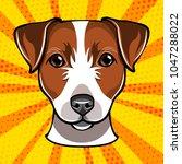 jack russell terrier head. dog... | Shutterstock . vector #1047288022