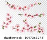 pink sakura branches collection ... | Shutterstock .eps vector #1047368275