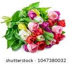 spring tulips flowers bouquet ...   Shutterstock . vector #1047380032
