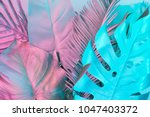 tropical and palm leaves in... | Shutterstock . vector #1047403372
