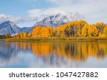 Small photo of Teton Autumn Refection From Oxbow Bend