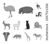 different animals monochrome... | Shutterstock .eps vector #1047511336