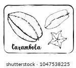 black and white fruit sketch... | Shutterstock .eps vector #1047538225