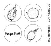 black and white fruit sketch... | Shutterstock .eps vector #1047538702