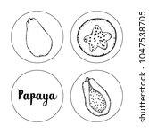 black and white fruit sketch... | Shutterstock .eps vector #1047538705