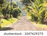 costa rica road at ojochal...   Shutterstock . vector #1047629275