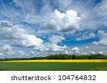 field of rapeseeds over... | Shutterstock . vector #104764832