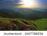 unbelievable colorful sunrise... | Shutterstock . vector #1047788536