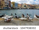 view on sea front with pigeons. ... | Shutterstock . vector #1047938332