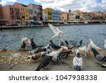 view on sea front with pigeons. ... | Shutterstock . vector #1047938338