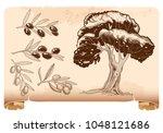 set for olive oil design  olive ... | Shutterstock .eps vector #1048121686