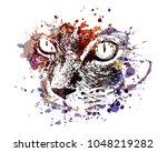 vector color illustration of... | Shutterstock .eps vector #1048219282