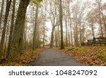 walking trail in fog | Shutterstock . vector #1048247092