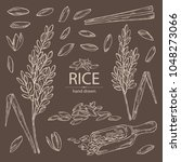 collection of rice  plant ... | Shutterstock .eps vector #1048273066