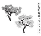 vector of bonsai tree. | Shutterstock .eps vector #1048280098