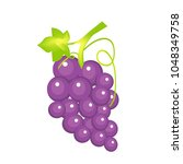 bunch of purple grapes. | Shutterstock .eps vector #1048349758