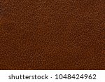 saturated brown leather... | Shutterstock . vector #1048424962