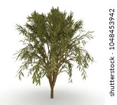 tree on white background in 3d... | Shutterstock . vector #1048453942